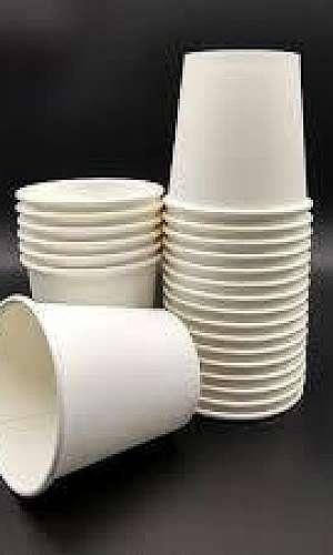 Copo biodegradável 300ml