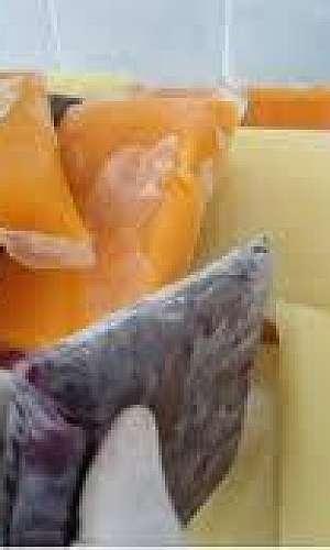 embalagem para polpa de fruta personalizada